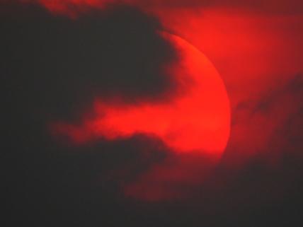 Sun_1[1]